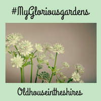 #MyGloriousGardens Round up Post