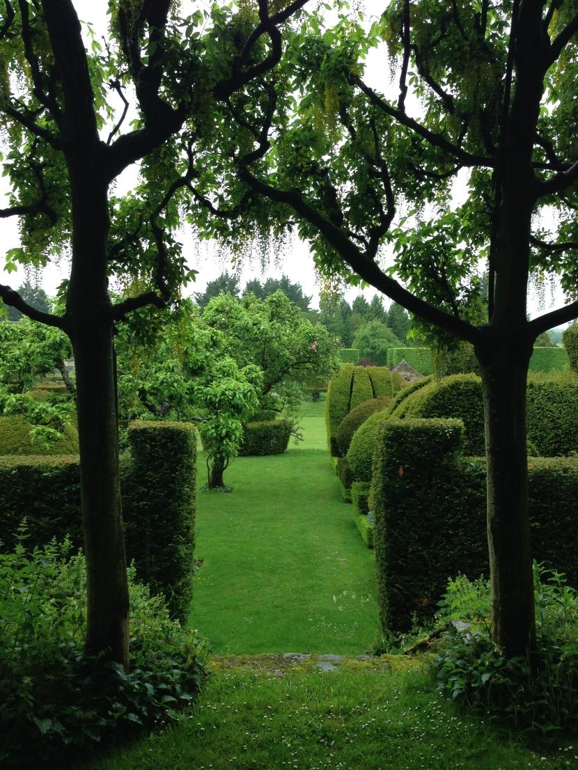 My Glorious Garden series: Hazelbury Manor Charity OpenDay.